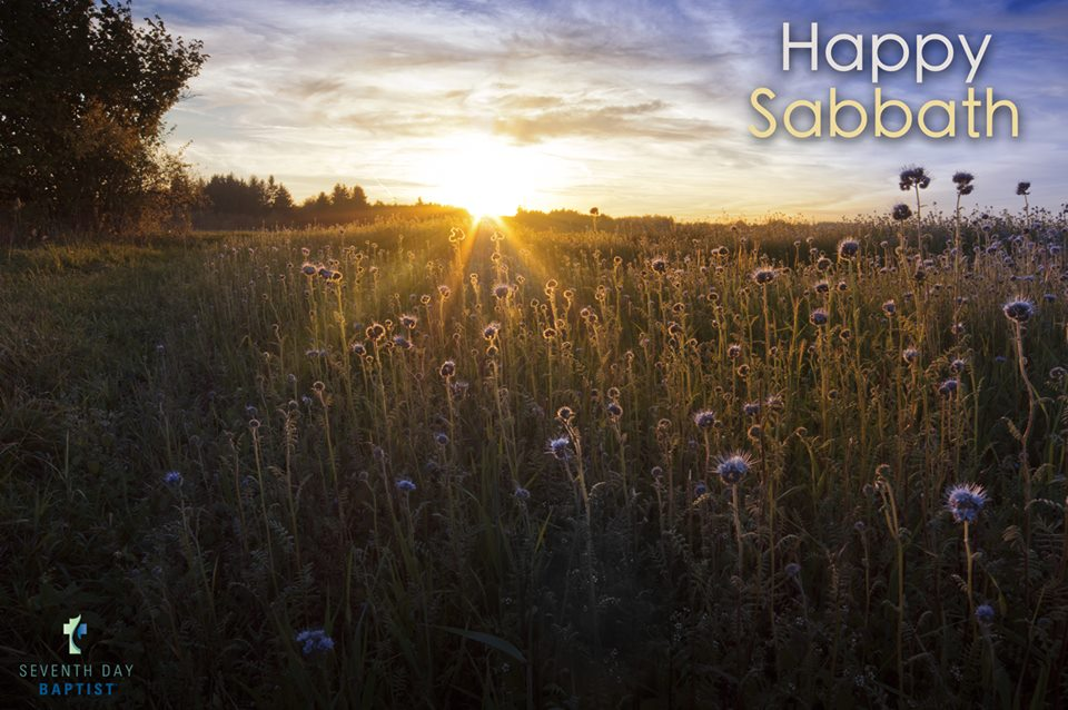 happy sabbath thicket